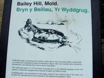 Picture of Information Board for Bailey Hill Mold