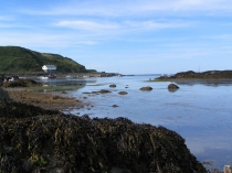 Picture of Best Beach on the Lleyn Peninsula.