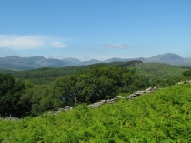 Picture of The Moelwyns