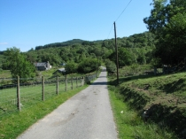 Picture of Country Lane in Snowdonia