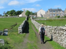 Picture of Country Lane and Stone Walls
