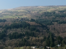 Picture of Crafnant Valley and Cefn Cyfa