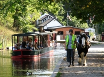 Picture of Boat Trips on the Llangollen Canal