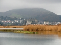 Picture of Conwy Bird Reserve