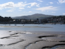 Picture of Conwy Estuary Mud Flats