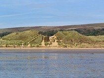 Picture of Oxwich Bay