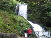 Picture of Lower Falls at Dolgoch