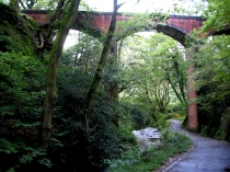 Picture of Dolgoch Railway Viaduct