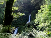 Picture of Mid Falls at Dolgoch