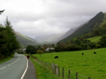 Picture of Road to Abergynolwyn