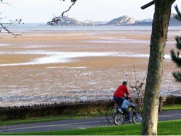 Picture of Swansea