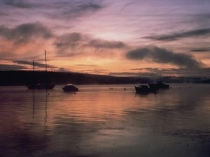 Picture of The Milford Haven