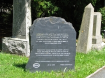 Picture of Plaque to the Oldest Tree in Wales