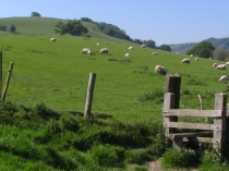 Picture of Gateway to Nant-y-Glyn Valley