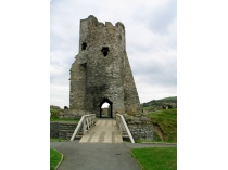 Picture of Aberystwyth Castle