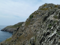 Picture of Rocky Headland Walk