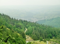 Picture of Gwydyr Forest Viewpoint