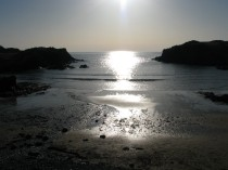 Picture of Porth Dafarch Beach