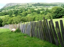 Picture of Slate Fencing
