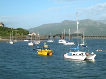 Picture of Barmouth Harbour Boats