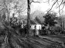 Picture of Pen-y-Groes Cottage in Black and White