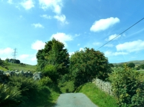 Picture of Country Lanes