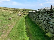 Picture of Follow the Long and Winding Wall