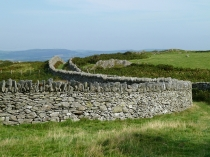 Picture of Long and Winding Wall