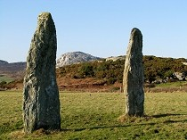 Picture of Penrhos Feilw Standing Stones
