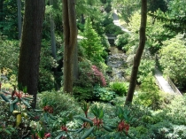 Picture of The Dell Bodnant Gardens