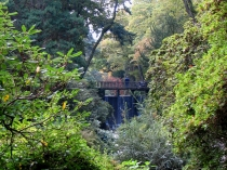 Picture of Waterfall Bridge at Bodnant Gardens