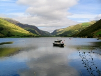 Picture of Tal-y-Llyn Lake