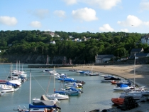 Picture of Harbour Beach in New Quay, Cardigan Bay