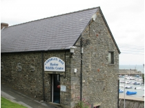Picture of Cardigan Bay Marine Wildlife Centre