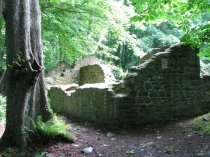 Picture of Llanina Ruins