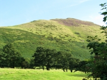 Picture of Caer Caradoc