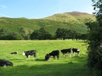 Picture of Caer Caradoc and Caer Caradoc Fort