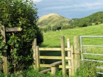 Picture of Walking in Shropshire and the Jack Mytton Way