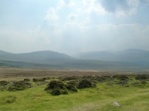 Picture of Welsh Uplands