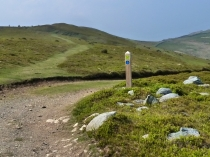 Picture of Waymarker for the North Wales Coastal Path