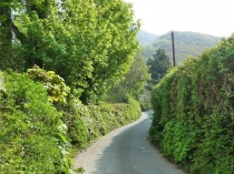 Picture of Country Lane Penmaenmawr