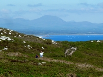 Picture of Walkers on the Llyn Peninsula Path