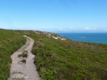 Picture of Lleyn Coast Path at Trwyn Llanbedrog