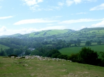 Picture of Rolling Clwyd Hills