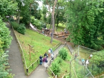 Picture of Adventure Playground at the Welsh Mountain Zoo, Colwyn Bay
