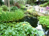 Picture of Gardens at the Welsh Mountain Zoo, Colwyn Bay