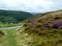 Picture of Clwydian Way near Llangollen