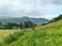 Picture of Deganwy Footpath