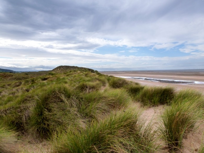 Picture Of Talacre Sand Dunes