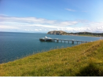 Picture of Visiting Llandudno Great Orme in June